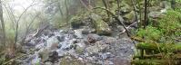 20120504つるべ落としの滝41