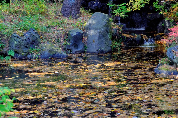 河口湖 久保田一竹美術館庭園2