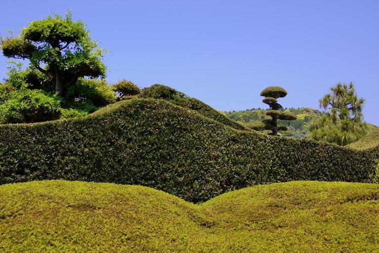 知覧武家屋敷庭園A(5)