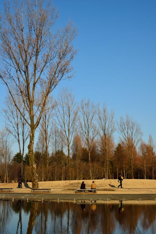 彩の森入間公園3
