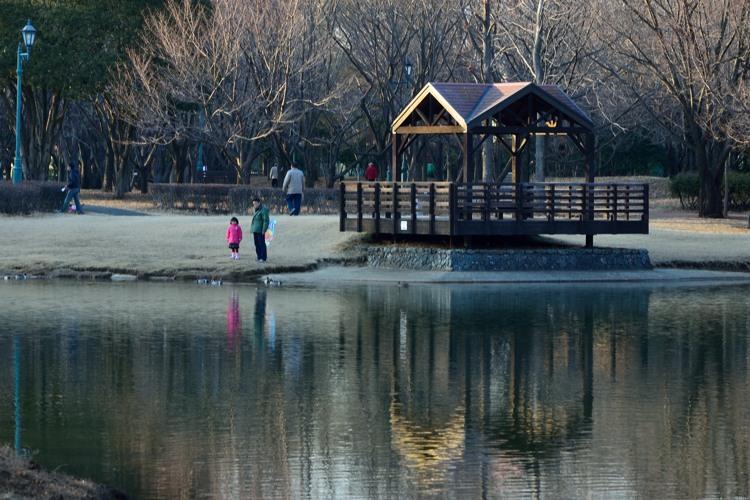 彩の森入間公園6