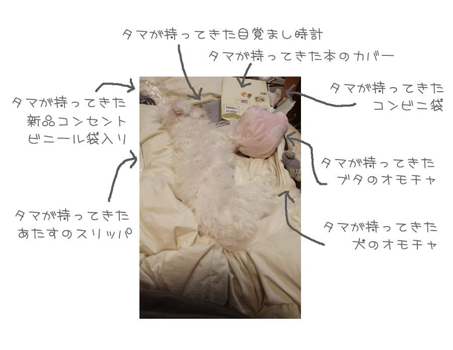 1_20130307193737.jpg