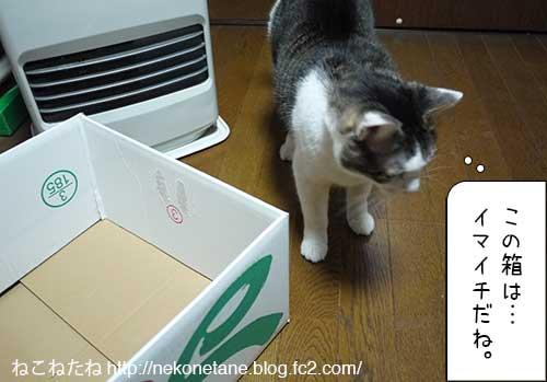 この箱はイマイチだね。