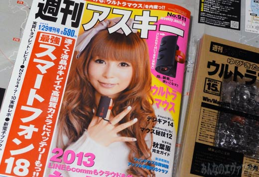 shinzi_higuchi_a_2012_12182.jpg