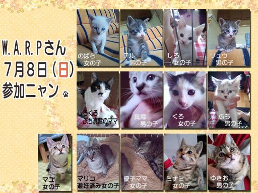 05_20120708_warp.jpg