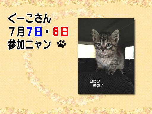 05_201207_guuko.jpg