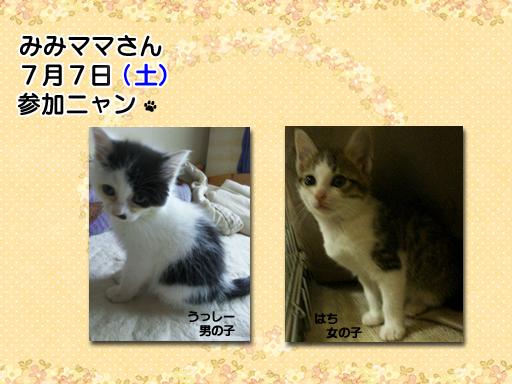 05_201207_mimimama.jpg
