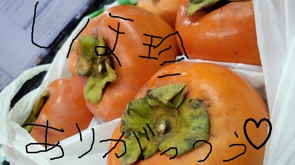 20121130170940563.jpg