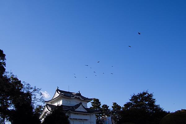 名古屋城-3
