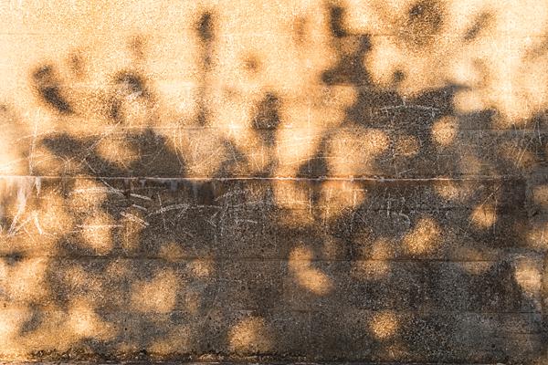 光と影-11