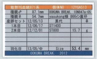 YG-871-12YGA513card-up.jpg