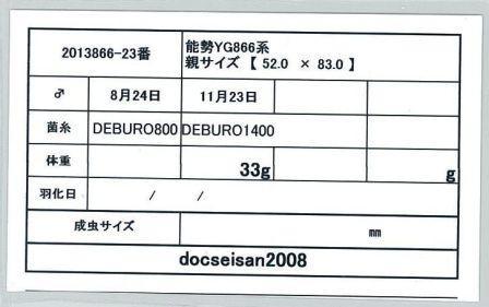 docseian2008-2013866-23card-up.jpg
