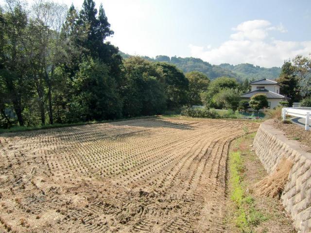 ikusakamuratonomura3.jpg