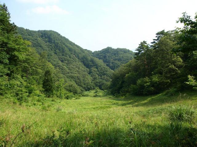 maruyama9.jpg