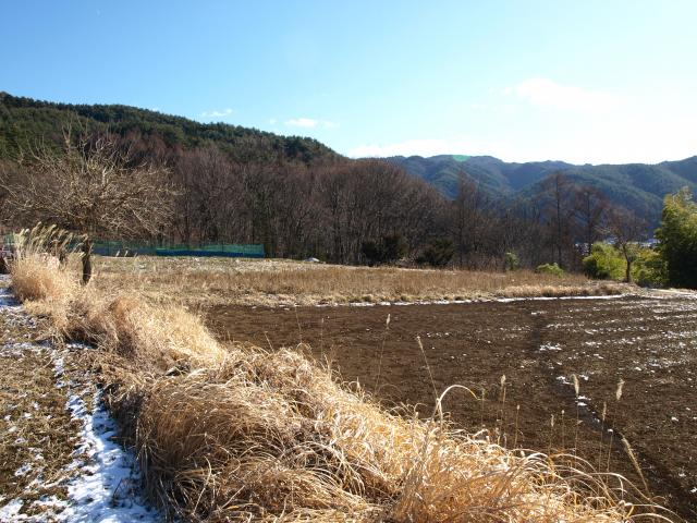 uenohira38.jpg