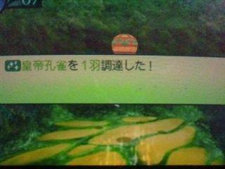 世界樹の迷宮4 皇帝孔雀調達