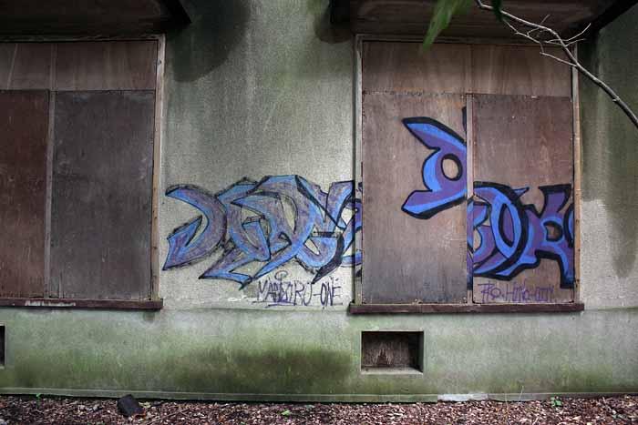 IMG_3936_ruinscat.jpg