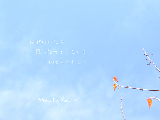 201211hakones1.jpg