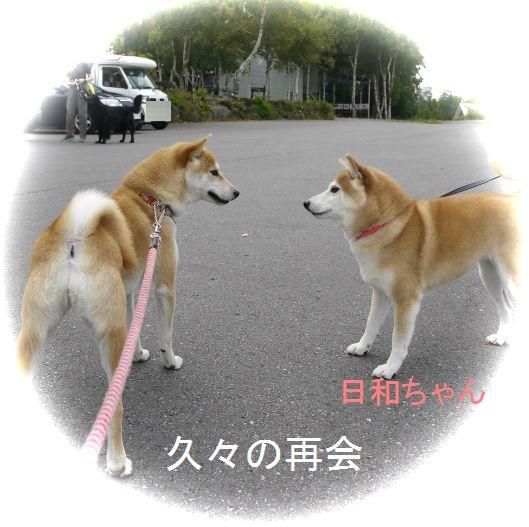 日和ちゃんとはなちゃんと空中散歩♪