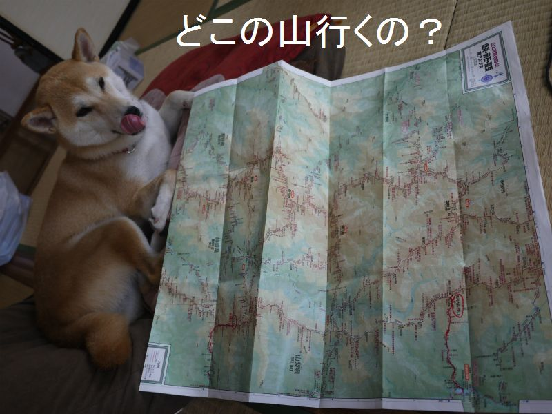 山登り計画