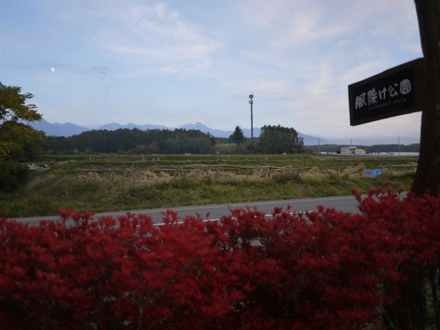 日和ちゃんとはなちゃんと蓼科紅葉見物・その3