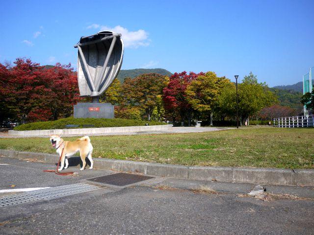 気持ちイイ!秋の朝散歩