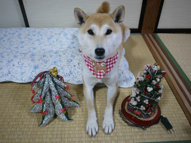 クリスマス飾りと趣味の話