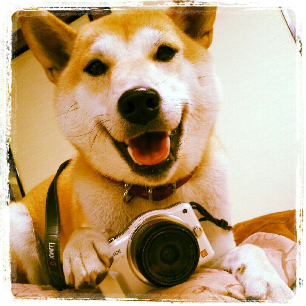なんちゃってカメラ女子♪
