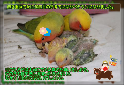 201402091829561b2.png