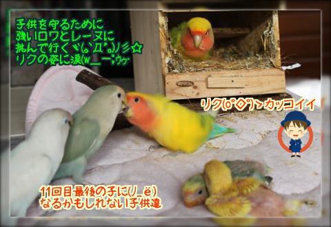 201402091830021f3.png