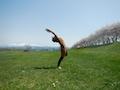 yoga shantidam 佐陽子