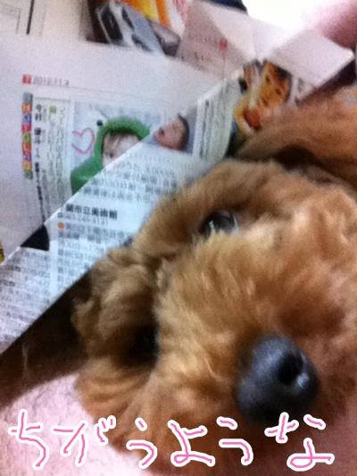 fc2blog_201211020019313b0.jpg