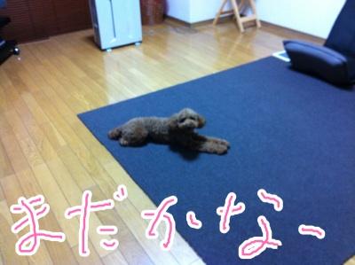 fc2blog_201211030021369f1.jpeg