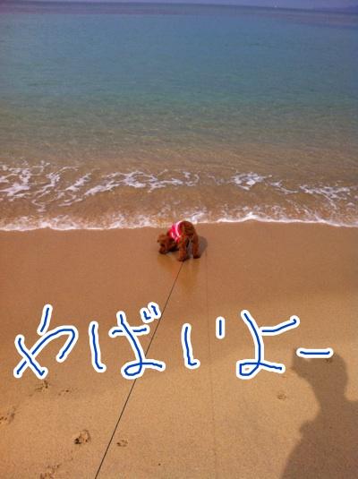 fc2blog_20121104221532fd3.jpeg