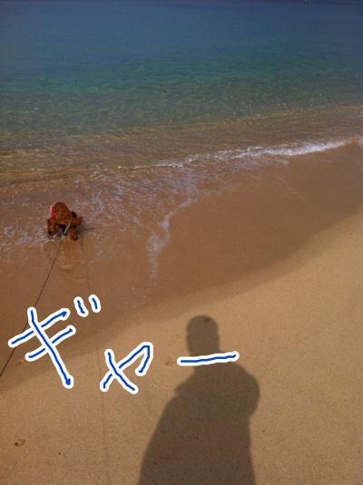 fc2blog_20121104221703db4.jpeg