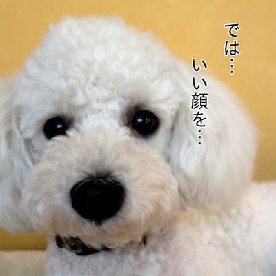 fc2blog_2012070919173988e.jpg