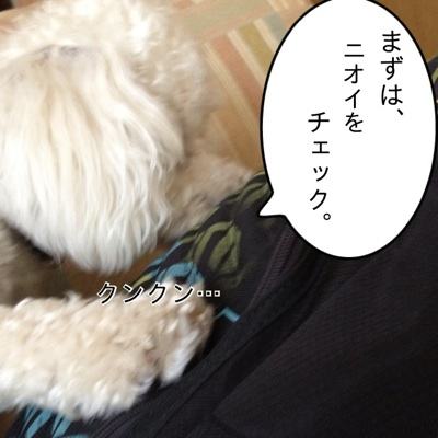 fc2blog_2012071016544948a.jpg