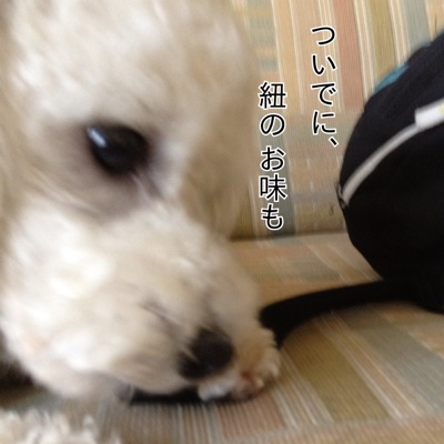 fc2blog_20120710165507640.jpg