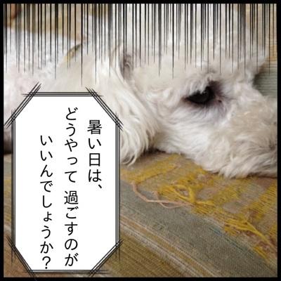 fc2blog_20120711154559b27.jpg