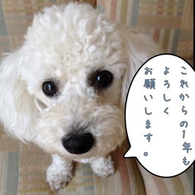 fc2blog_20120717161250da3.jpg