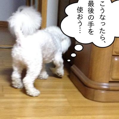 fc2blog_2012071919362589a.jpg