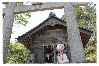 近くの神社まで♪