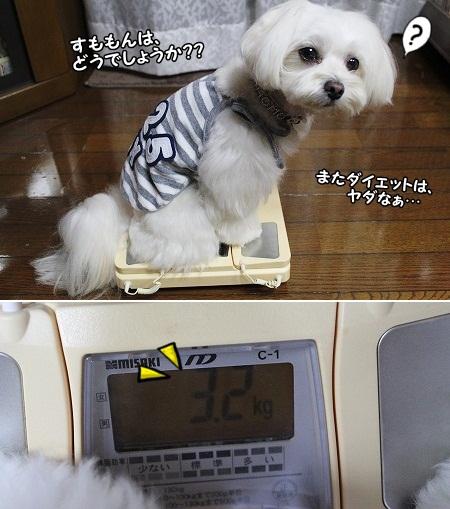 7月2日 すももん→3200g