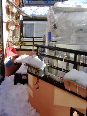 屋根の雪が落ちてベランダは雪でいっぱいです(ToT)/~~~晴れて気温が上がる様なので直ぐに溶けそう~♪一安心です。2014.02.16~朝