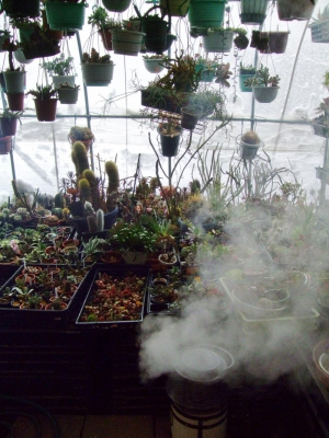 16年振りの大雪予報~ビニールハウス内で練炭火鉢を焚いて外の雪を溶かしたい~ッ・・・2014.02.08~午前9時