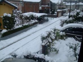 一夜明け雪が雨に変わりハウスに積る雪も落ちていました・・・何とか乗り越えた大雪。2014.02.15.09:26