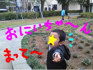 snap_tanosiiikuji962_201211520552.jpg