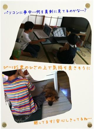 attachment00_20120901005241.jpg