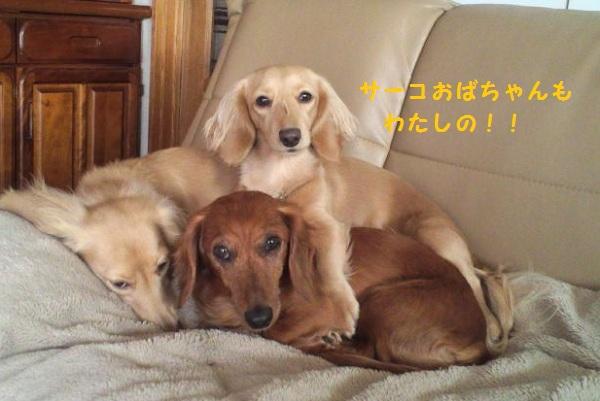 02_20120513085634.jpg