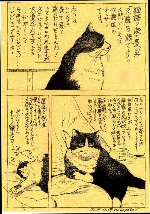 猫語り-1